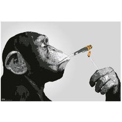 Steez Małpa i papieros - plakat