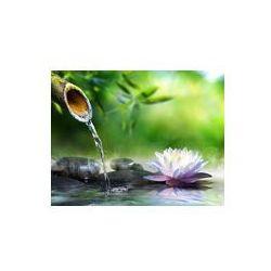 Foto naklejka samoprzylepna 100 x 100 cm - Ogród zen z kamieni do masażu i lilii wodnej