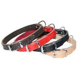 Dingo Obroża skórzana podszyta filcem 1,2x36cm czerwona