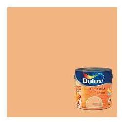 Kolory Świata - Buddyjskie kadzidło 2.5 L Dulux