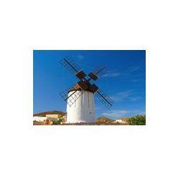 Foto naklejka samoprzylepna 100 x 100 cm - Fuerteventura