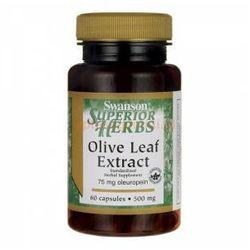 Liść oliwny ekstrakt 500mg Olive Leaf Extract 60 kapsułek SWANSON
