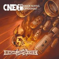 Chuck Norris Experiment, The - Right Between The Eyes