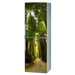 Naklejka na lodówkę - Droga w lesie 1405