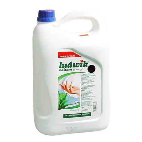 LUDWIK 5l Aloes Balsam do mycia naczyń