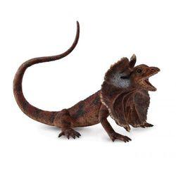 Jaszczurka Agama korzeniasta L