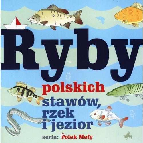 Ryby polskich stawów, rzek i jezior (opr. broszurowa)