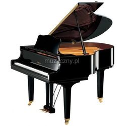Yamaha GC1 M PE Baby Grand fortepian (161 cm) Płacąc przelewem przesyłka gratis!