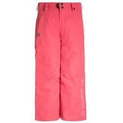 Horsefeathers BLAST Spodnie narciarskie pink