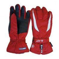 Rękawice narciarskie AST 2ZAA (AWK)