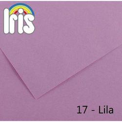Brystol Canson Iris B1/240g liliowy 25ark.
