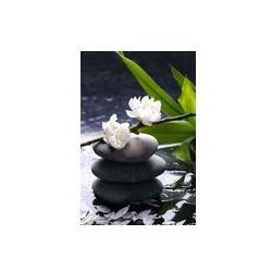 Fotoboard na płycie 50 x 70 cm - Czarne kamienie do masażu z wiśni, Płatek na krople wody