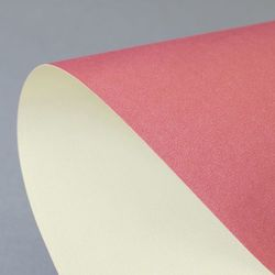 Karton ozdobny Premium Prime Galeria Papieru, rubinowo-kremowy, format A4, opakowanie 20 arkuszy, 203612 - zamówienia, porady i rabaty | (34)366-72-72 | sklep@solokolos.pl |