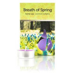 Świeczki zapachowe Powiew Wiosny