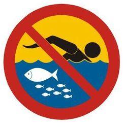 Kąpiel zabroniona - hodowla ryb