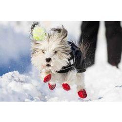 Buty z naturalnej gumy dla psów S
