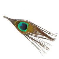 pióro oczko pawia oprawione - 2 szt