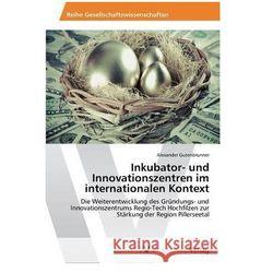 Inkubator- und Innovationszentren im internationalen Kontext