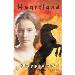 Heartland. Tom 7. Blizny przeszłości (MOBI)