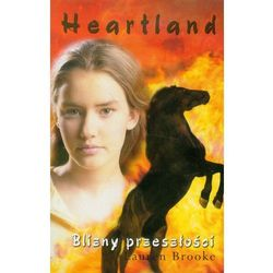 HEARTLAND 7 BLIZNY PRZESZŁOŚCI (opr. miękka)
