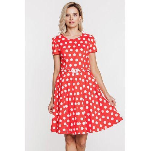 c34540de Rozkloszowana czerwona sukienka w białe grochy - Bialcon - porównaj ...