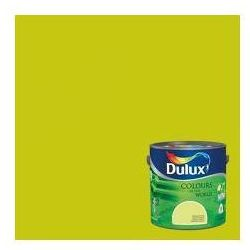 Kolory Świata - Zielone tarasy 2.5 L Dulux