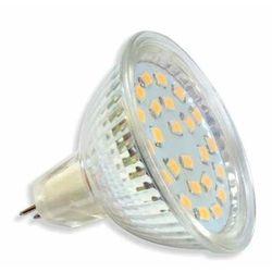 Żarówka 21 LED SMD2835 5W MR16 230V