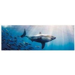 HEYE 1000 EL. Biały rekin