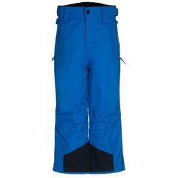 Brunotti DORUNSNY Spodnie narciarskie blue