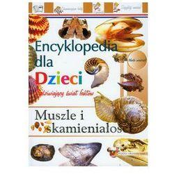 Muszle i skamieniałości Encyklopedia dla dzieci