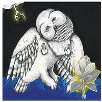 Songs: Ohia - Magnolia Electric Co. (10th Anniversary Deluxe Edition)