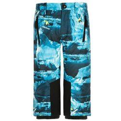 Molo JUMP Spodnie narciarskie blue