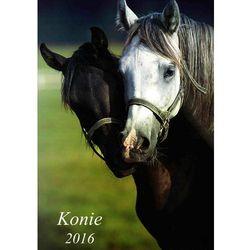 Kalendarz 2015 ścienny 13-planszowy Konie
