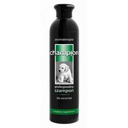 Champion szampon dla szczeniąt 250ml