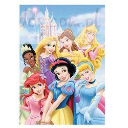 Księżniczki - Disney Princess - Zamek - plakat 3D