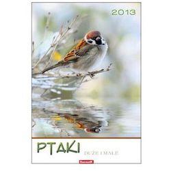 Kalendarz planszowy 2013 Ptaki duże i małe (BPZ)
