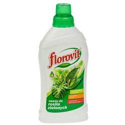 FLOROVIT 1kg Nawóz do roślin zielonych